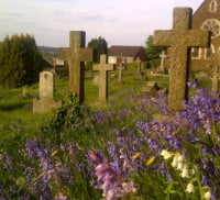 Cross shaped headstones at Green Lane Cemetery, purple wild flowers