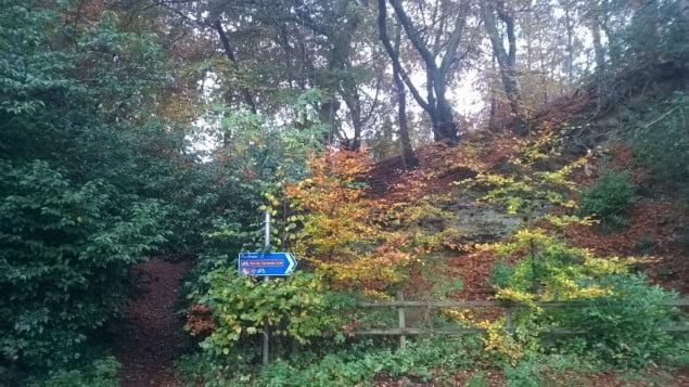 Moor Park in autumn 2015 copyright FTC