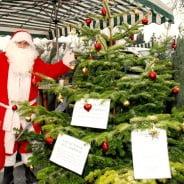 Father Christmas and Christmas tree