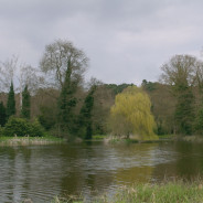 River Wey at Waverley