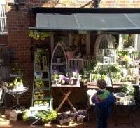 Borrelli flower shop copyright FTC