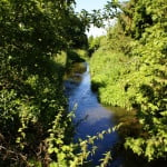 River Wey tributary