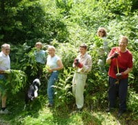 waverley countryside volunteers