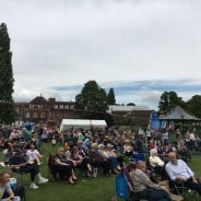 Crowds enjoy Picnic in the Park 2016.