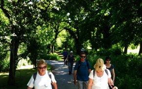 Ewshot walk 2017 Old Park1