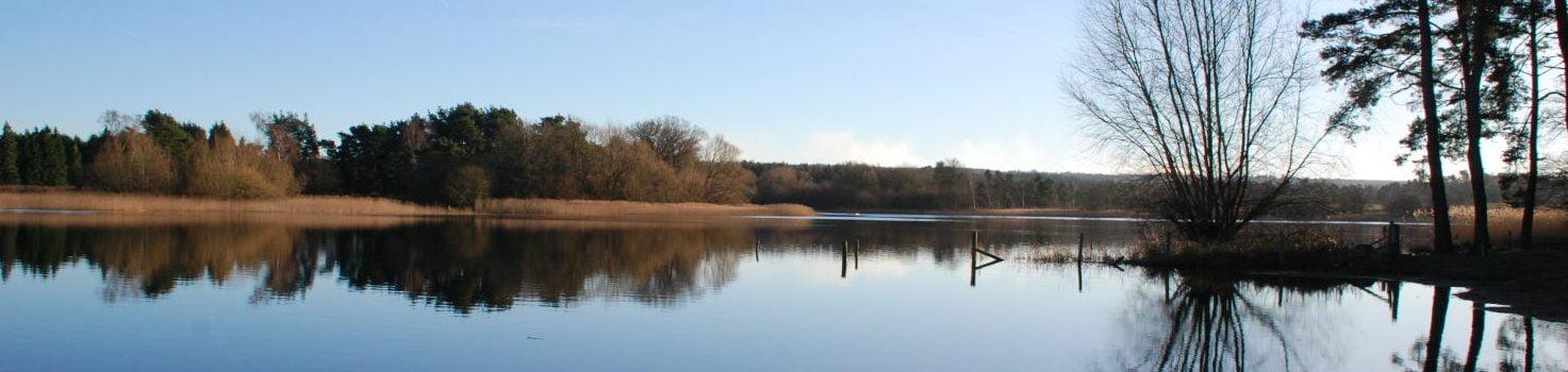 Frensham Ponds, copyright Elodie Curran