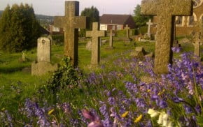 Cross shaped headstones, purple wild flowers in forground