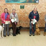 Farnham dog training