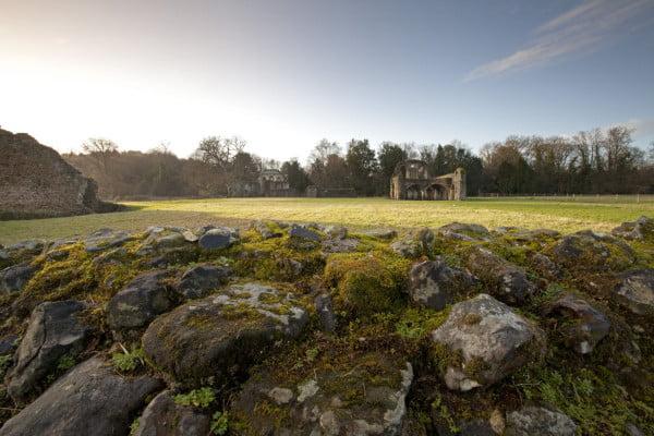 Waverley Abbey © C Whitehouse