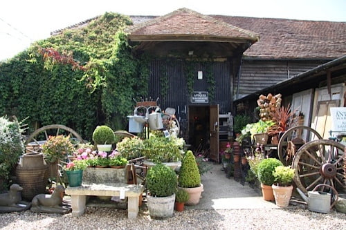 Pots of shrubs and ornamental trees outside old barn.