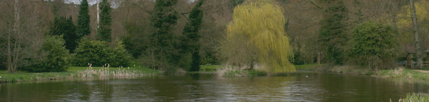 River Wey at Waverley Abbey