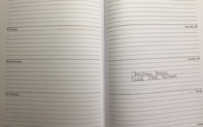 pages of a diary.