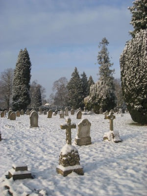 Snow, grave stones, trees in background, blue sky