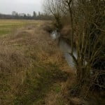 Bishop's Meadow river Wey Feb 2015 copyright FTC