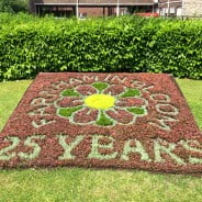 Flowers planted to spell out Farnham in Bloom 25 years