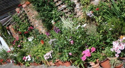 Secret garden competition winners 2015