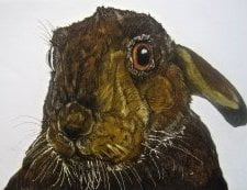 hare_s_looking_at_you New Ashgate Gallery