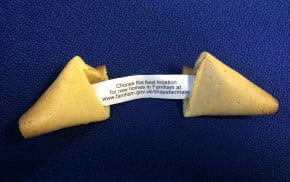 Farnham neighbourhood plan consultation plan, fortune cookie with message