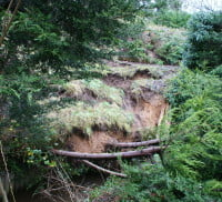 Poorly maintained embankment