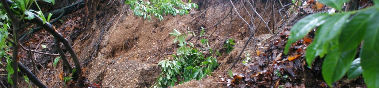 Greenhill landslip FRMC