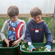 Two boys planting up plants at a gardening workshop.