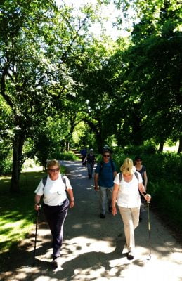 Ewshot walk 2017 Old Park1