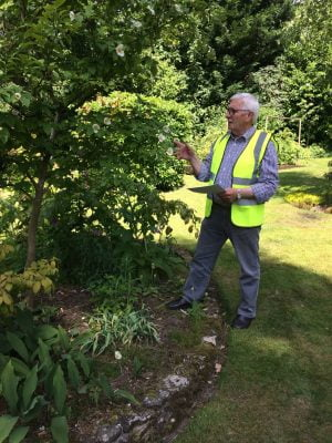 Peter Bridegman tree trail