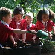 Four school children plant a hanging basket
