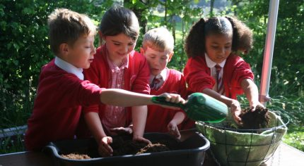 Four school children plant a hanging basket