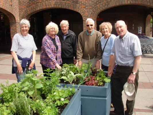 Edible planters for public