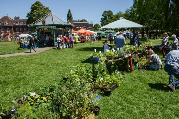 Plant stall and marquees in a park area