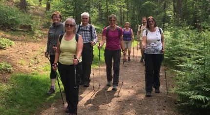 Group of people walking in the woods.