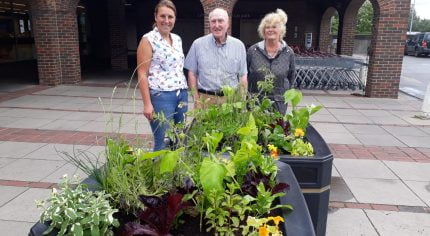 3 people standing behind two planters filled with vegetables ripe for harvest.