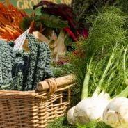 January Farmers' Market