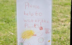 A4 poster drawn by a child saying Please help to water the plants.