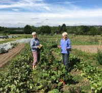 Two females in a field of vegetables