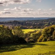 A photo of the Surrey Hills
